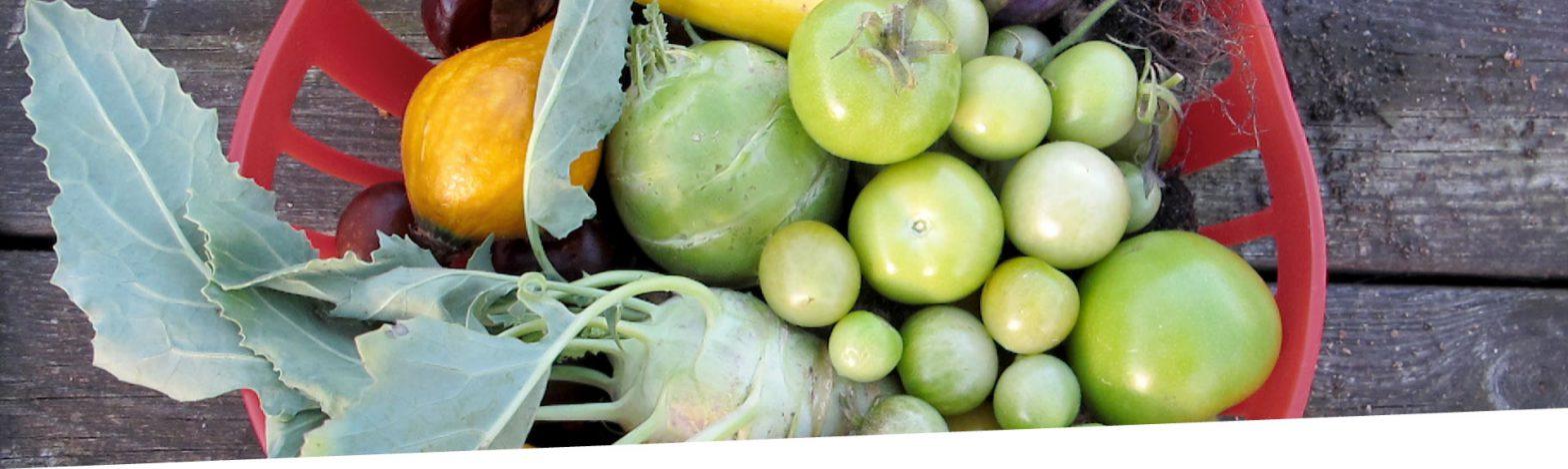 Lucie - Grüne Tomaten und Gemüse